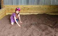 Fossil Dig | Dinosaurs Come to Life | Clyde Peeling's Reptiland