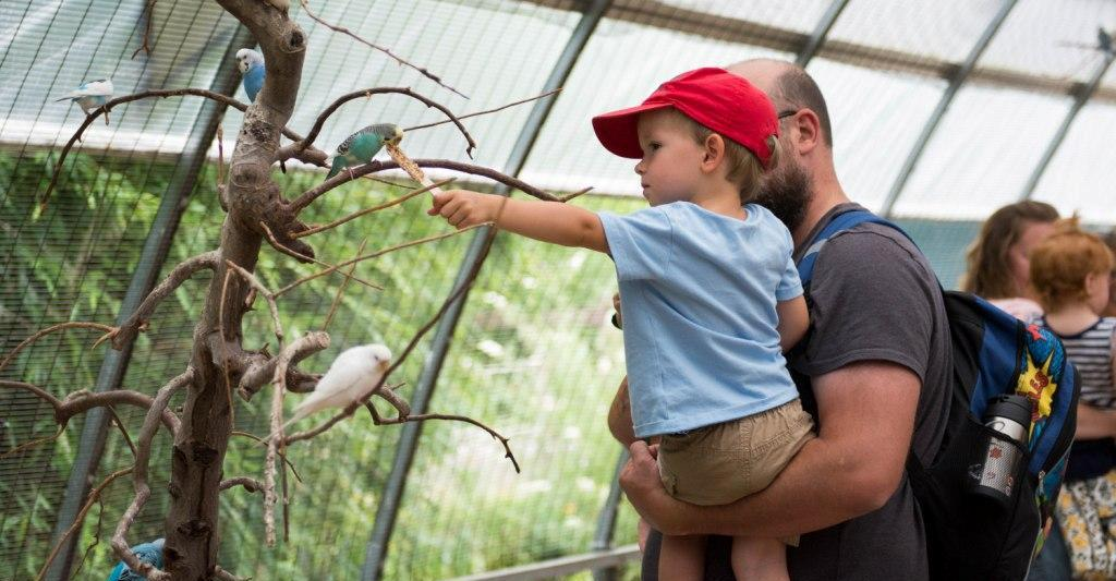 Join us for Reading with Reptiles, our story time series, and take advantage of our other exhibits and shows! | Clyde Peeling's Reptiland