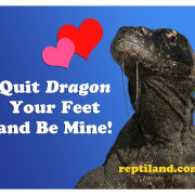 Spread the love with FREE valentines from Clyde Peeling's Reptiland