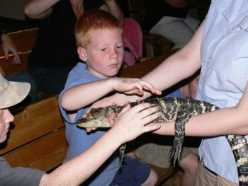 Field trips to Clyde Peeling's Reptiland are fun and educational!