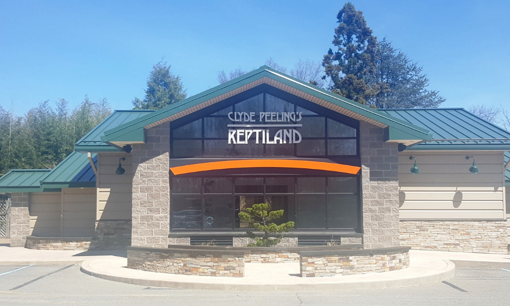 Sensory Friendly Fun at the Zoo | May 18, 2019 at Clyde Peeling's Reptiland