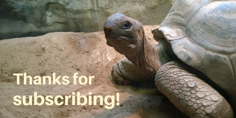 Thank you for subscribing to email updates from Clyde Peeling's Reptiland!